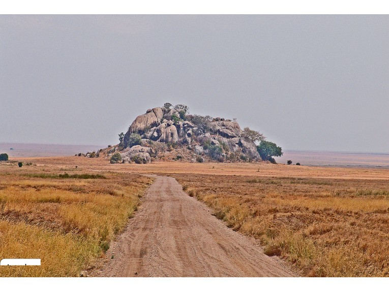 African Kopji