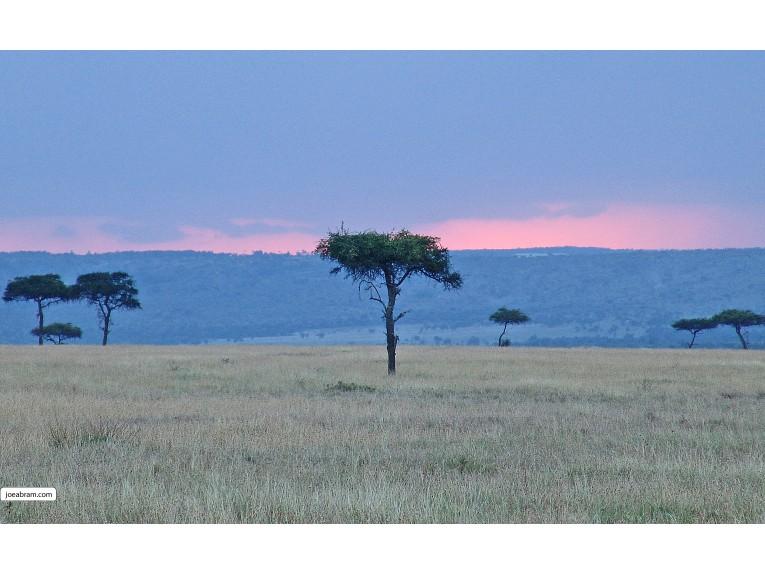 Serengeti Sunset-2