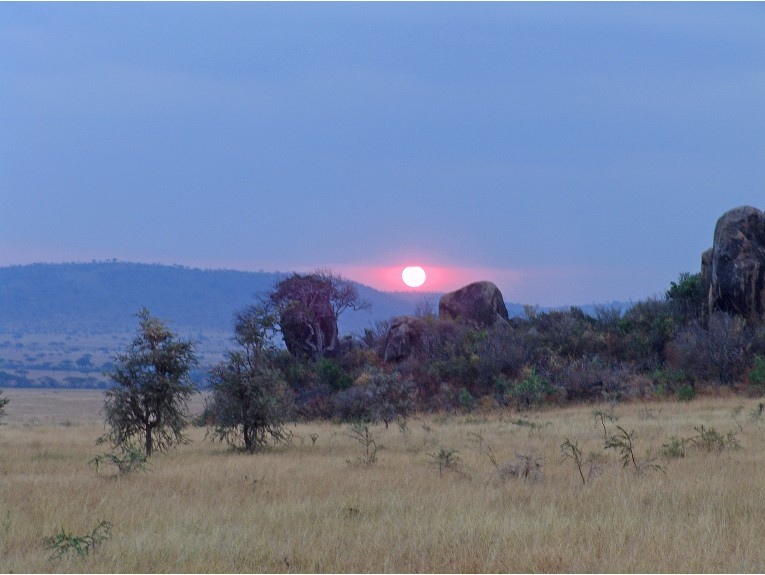 Serengeti Sunset-1